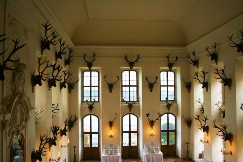 Schloss Moritzburg 3